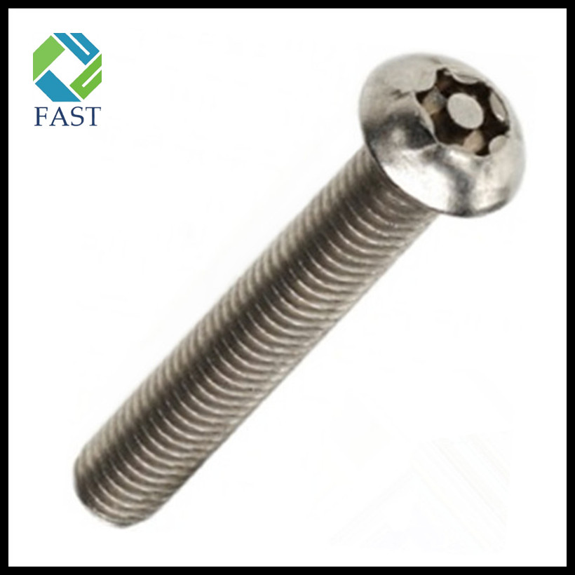 Torx Security Screw