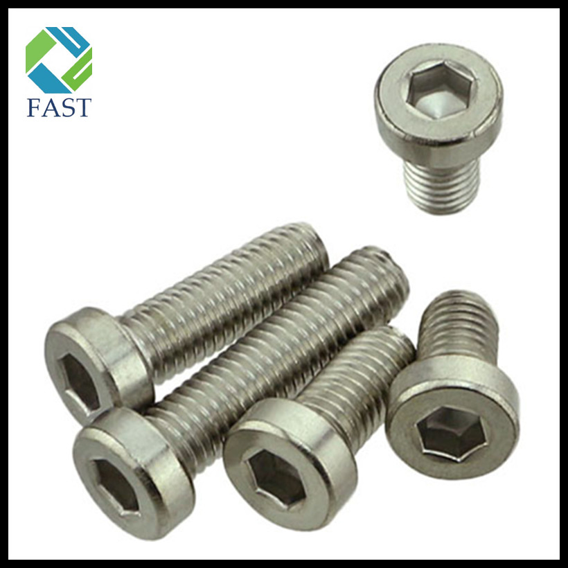 Hex Socket Thin Head Cap Screw